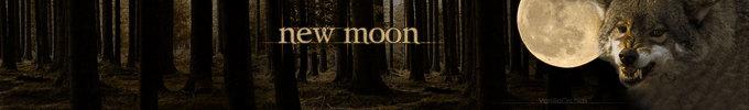 New Moon Header